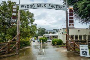 Wyong Milk Factory