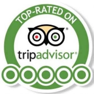 tripadvisor top-rated